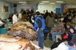 Trappers wait for fur grading at the Thompson Fur Table.